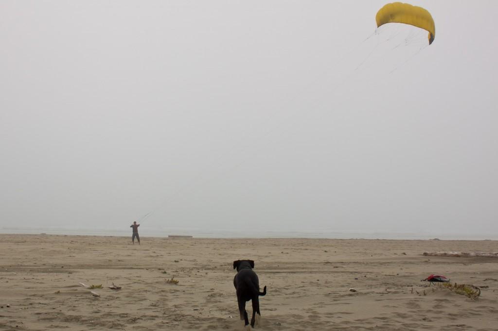 Tim flying his training kite on the foggy beach near Tofino