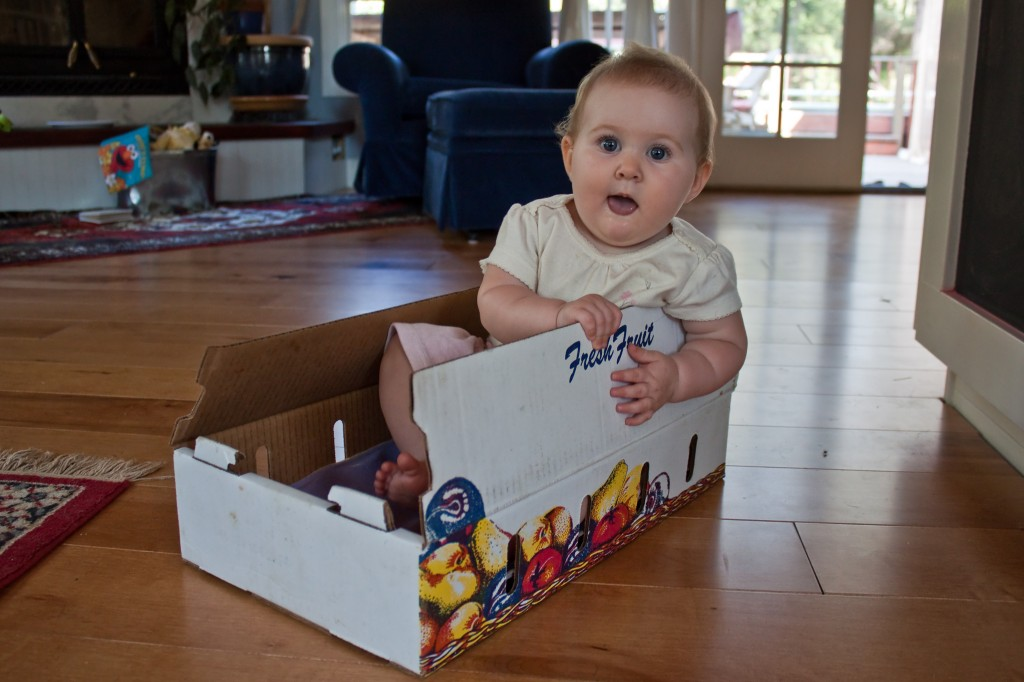 Adorable little Audrey in a box