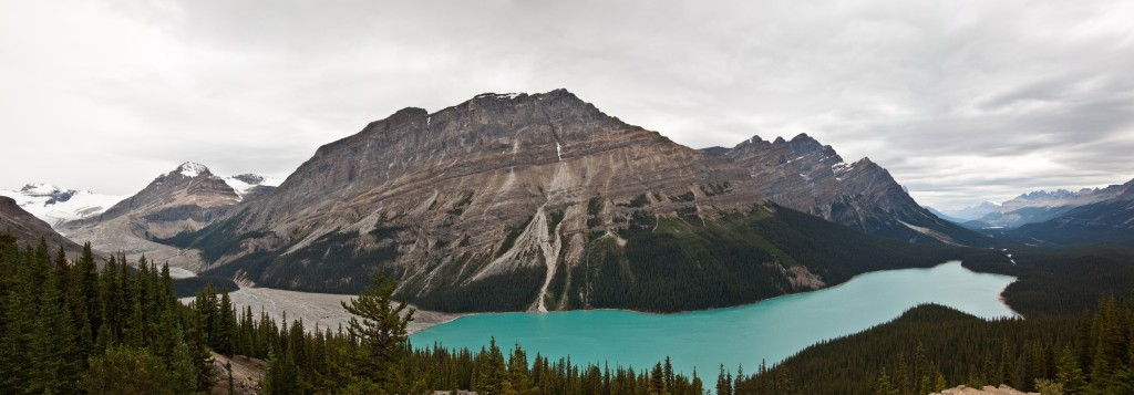 True color photo of the amazing turquoise Peyto Lake in Banff National Park