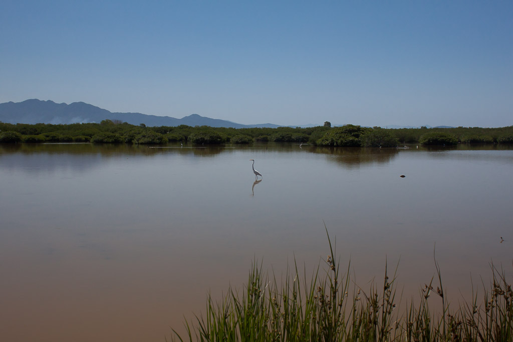 Lagoon near San Blas.