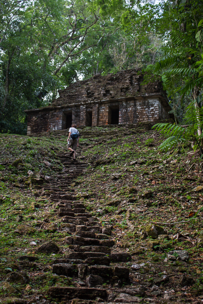 Tim ascending of the many steep stairways at Yaxchilan.
