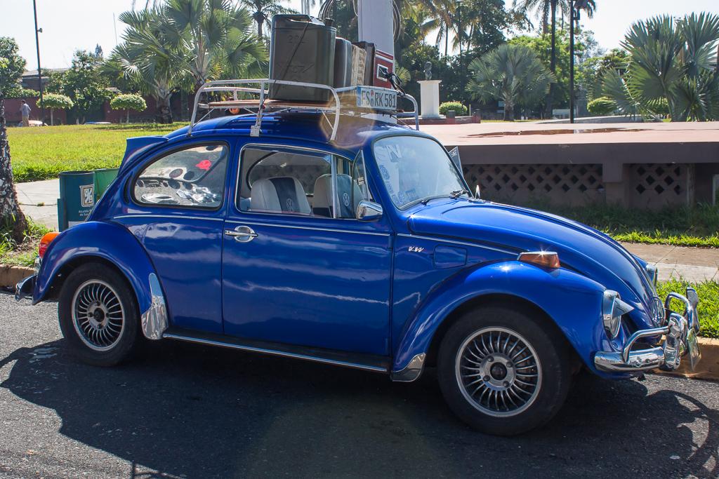 Caravana por el Día Mundial del Escarabajo