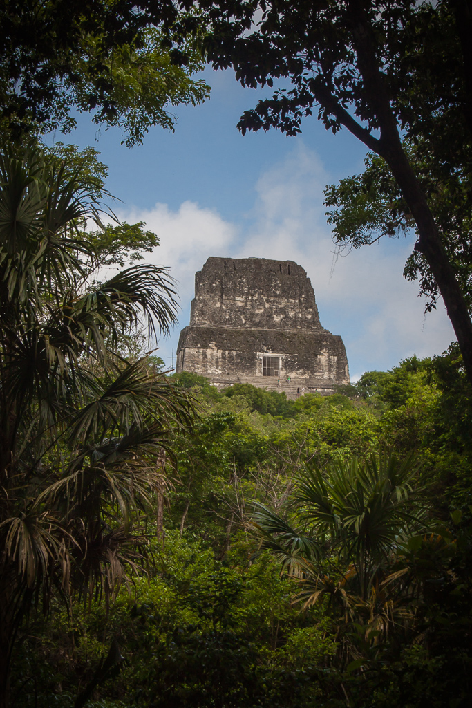 Sneak peak at Temple IV, Tikal.