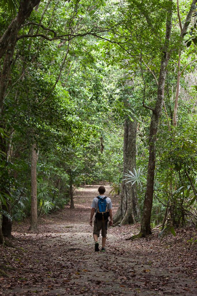 Tim strolling down a jungle path, Tikal.