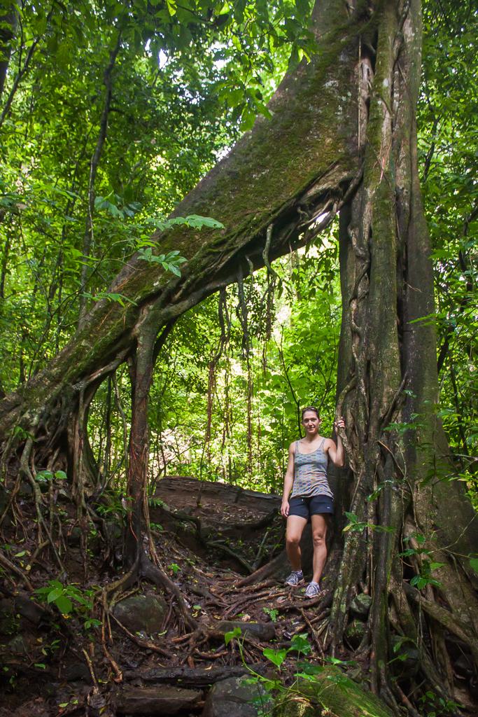Emily enjoying the jungle hike.