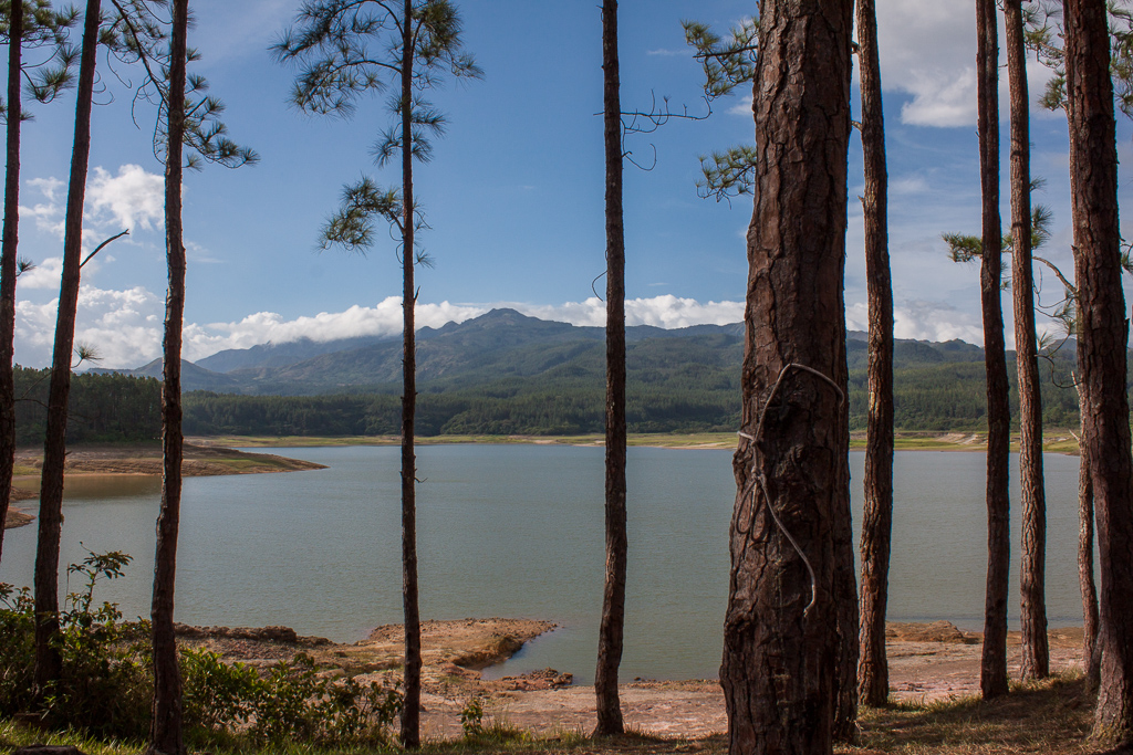 Laguna Yeguada