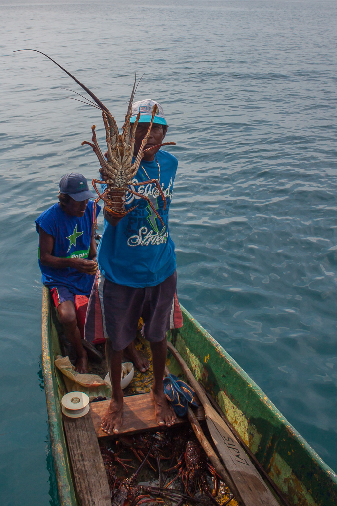 Massive lobsters caught by the local Kuna fishermen.