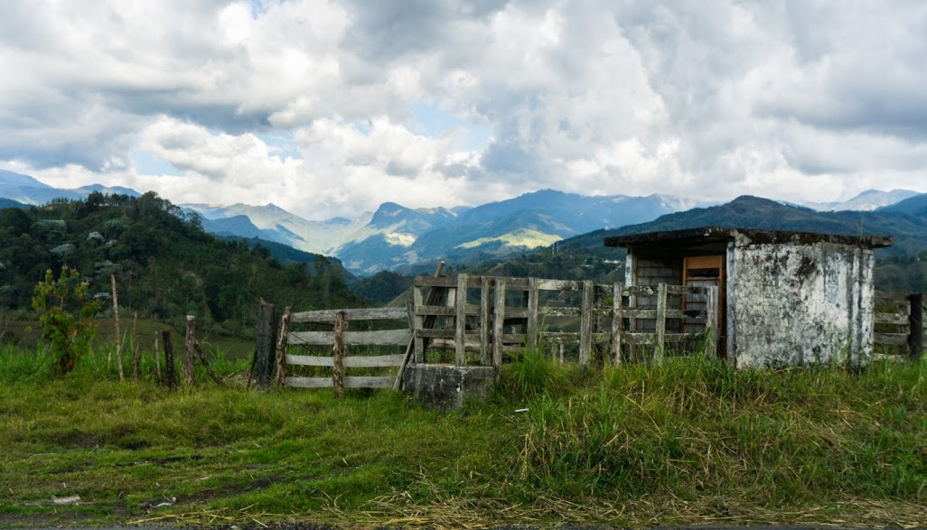 Our first view out over Valle de Cocora (photo by Elizabeth Frank).