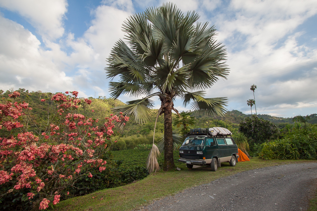 Amazing camp spot on a coffee farm in Manizales. The van door opened out onto fields of green bushes covered in bright red coffee berries.