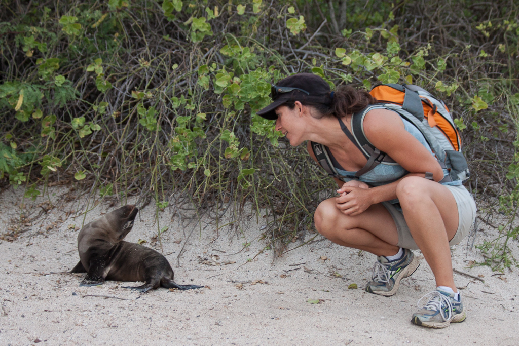 Emily fell in love with this baby sea lion.
