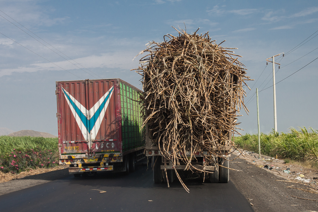 Semis passing overlaoded semis with sugar cane stalks falling all over...typical highway driving in Peru.