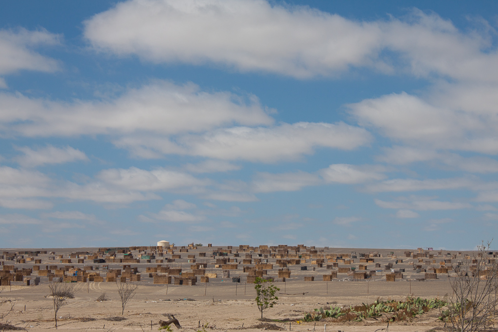 We saw many of these semi-organized shanty towns dotting the desert. The walls and roofs of the small square shacks were made of woven reed mats.