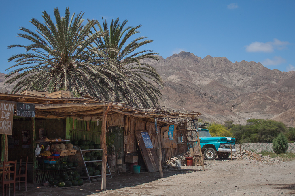 We drove through this agricultural oasis town in the coastal deserts of Perú.