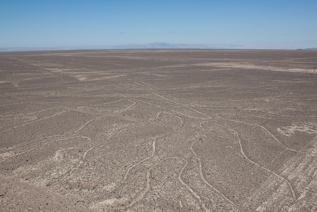 Nazca lines as seen from the observation tower.  This figure is the Arbol (tree) although it is hard to tell.