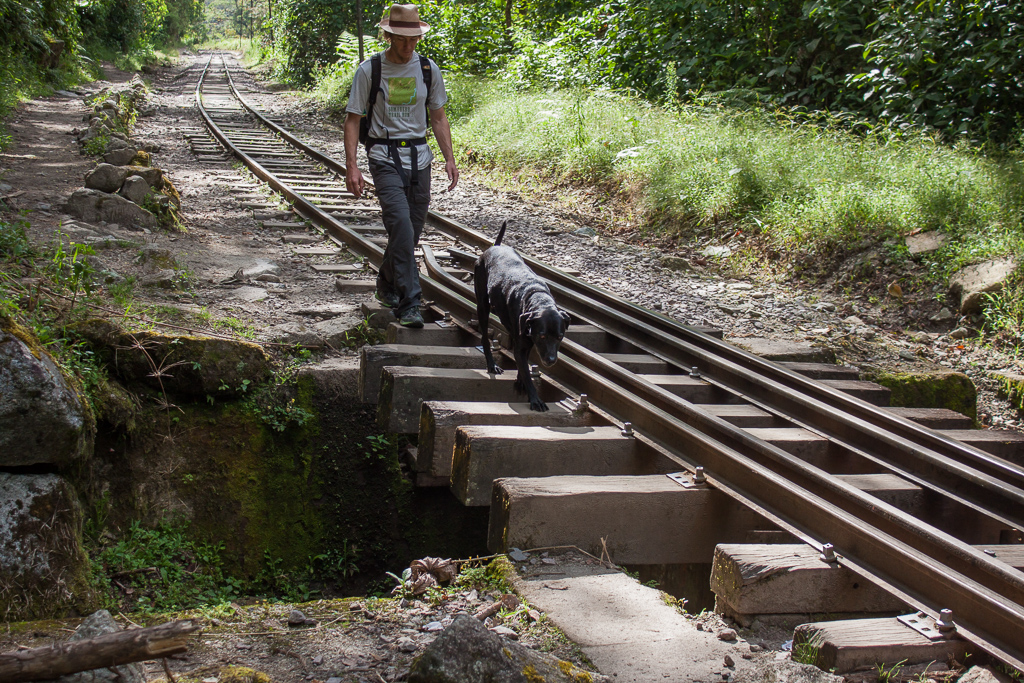 Hobie carefully hopping along the railroad ties on one of the many stream crossings.
