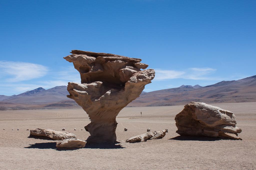 Piedra de Arbol.