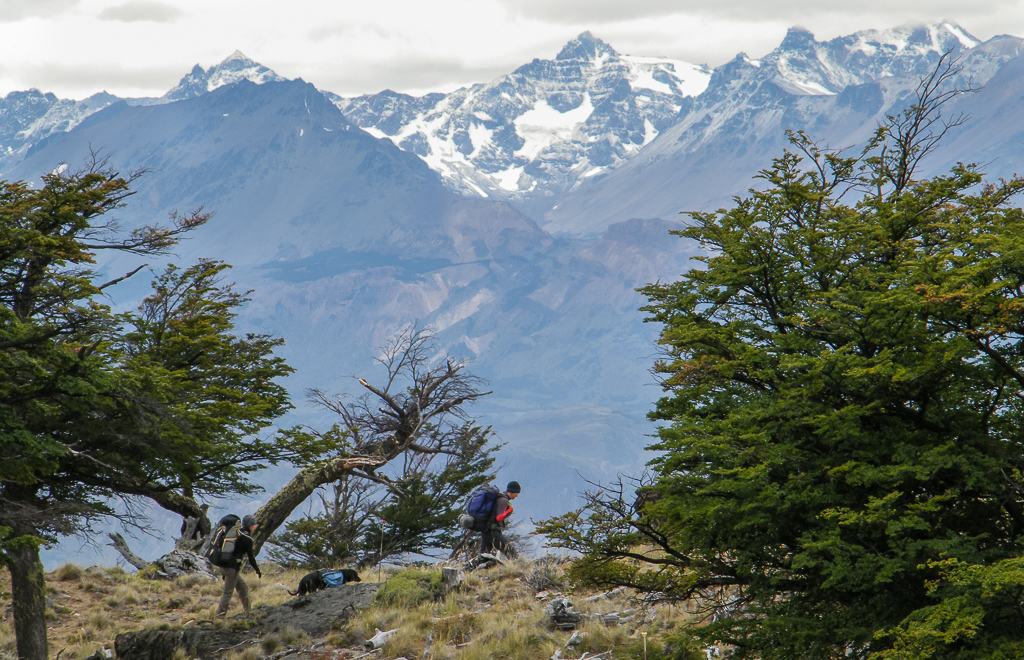 Hiking in Parque Patagonia. Photo credit: Corey Axtell.