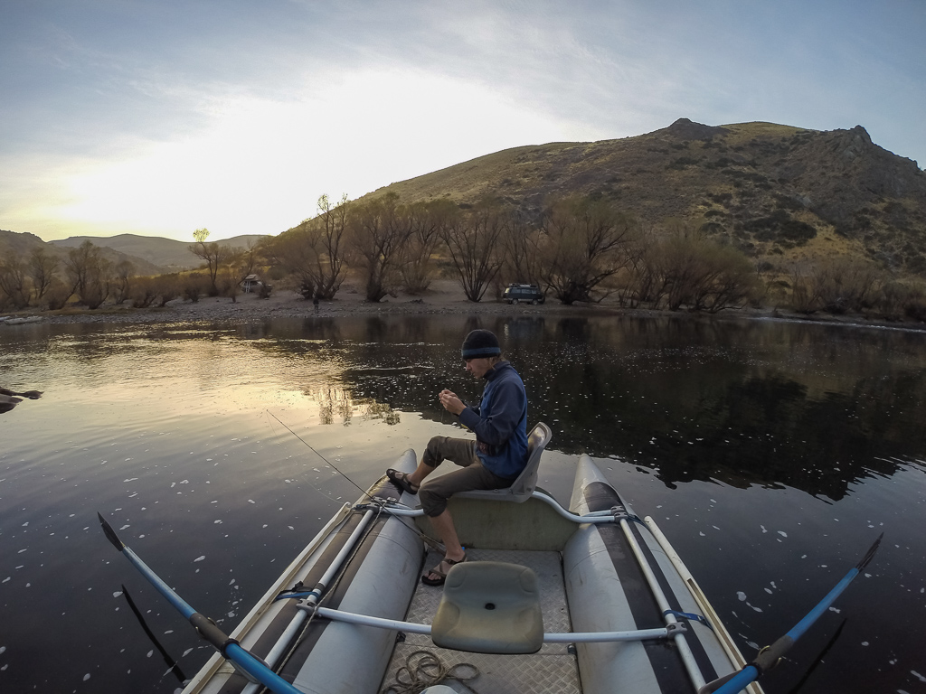 The early bird gets the fish. Photo by Corey Axtell.