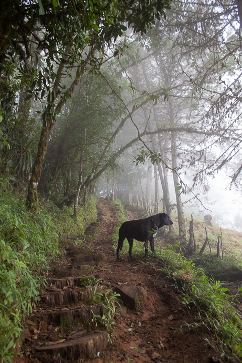 Cerro Chirripó, Costa Rica, 2014